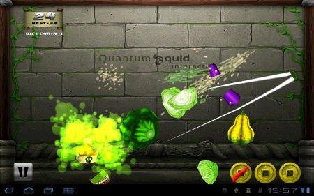 Veggie Samurai HD версия 1.6