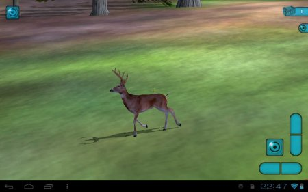 3D Hunting Alaskan Hunt версия 1.0.5