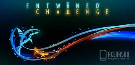Entwined™ Challenge