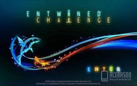 Entwined™ Challenge v1.3